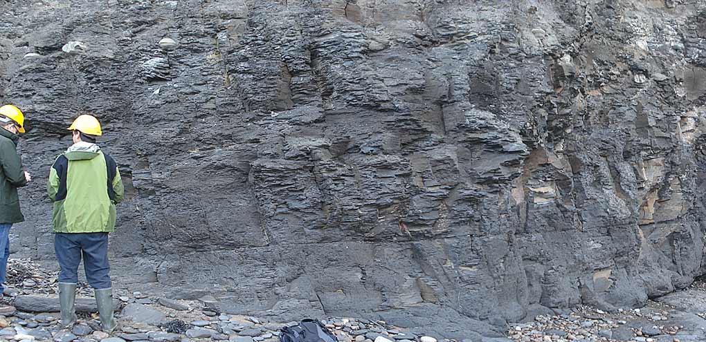 Coastal exposures of fractured Jurassic shales, eastern UK