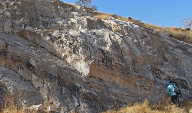 Hydrocarbon seeping from the fracture network (Eocene carbonate of the Pila Spi Fm., Kurdistan Region of Iraq).